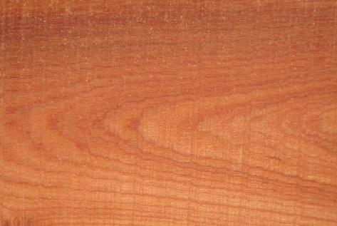 Phân biệt gỗ Xoan Đào, gỗ tự nhiên