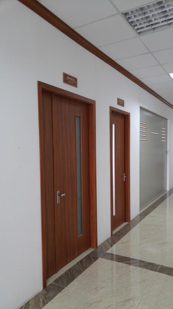 cửa gỗ văn phòng đẹp Huge